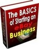 Thumbnail The Basics of ebay ebook With Master Resale Rights.