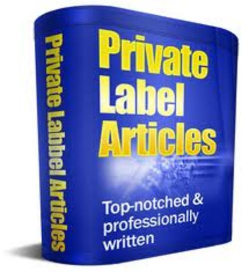 Product picture 1380 Finance Article Collection with PLR