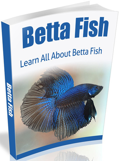 Product picture Betta Fish - eBook with MRR
