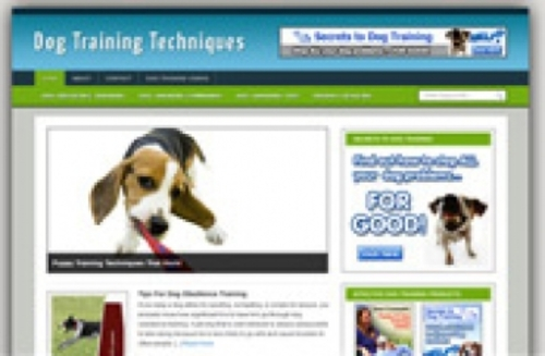 Product picture DogTrainingBlog.zip
